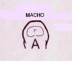 analmacho