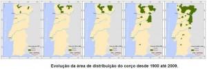 corco19002009