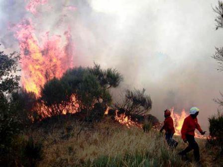 incendio_caramulo