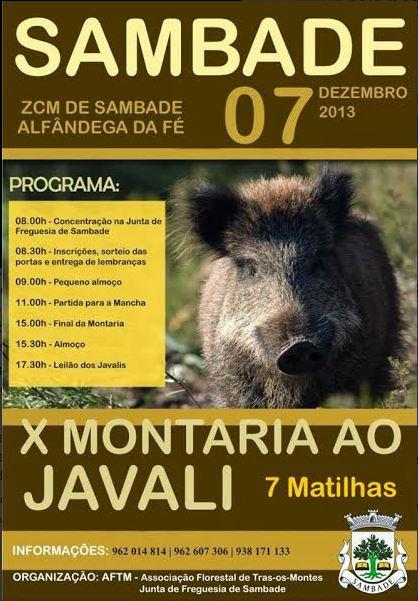 montaria_sambade_2013