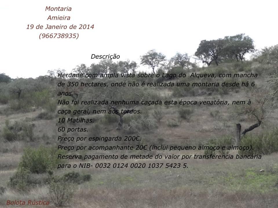 montaria_amieira2014