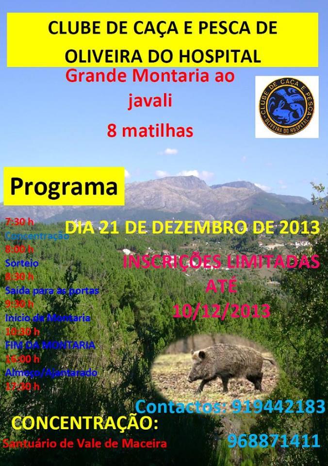 montaria_oliveira_hospital2013