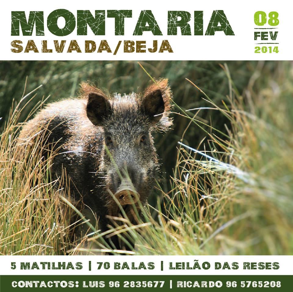 montaria_salvada2014