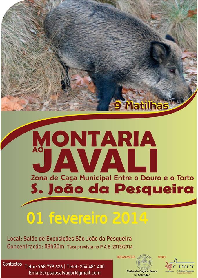 montaria_sao_joao_pesqueira2014