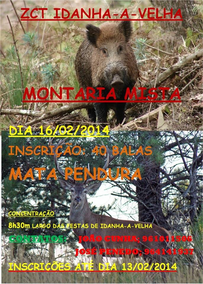 montaria_idanha_a_velha2014