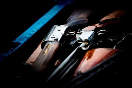 Federação Portuguesa de Caçadores discorda das alterações à lei das armas