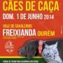 vii feira caes freixianda 2014