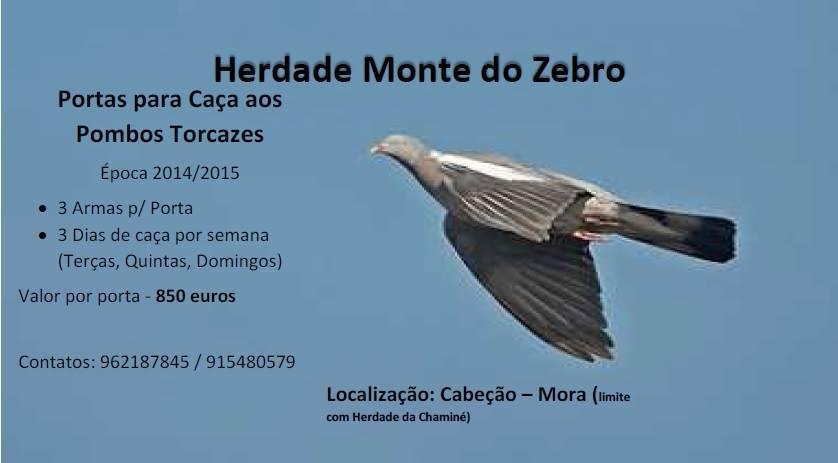 herdade_monte_zebro