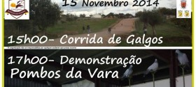 3_festa_caca_estremoz_15novembro2014