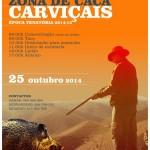 montaria_carvicais_25outubro2014