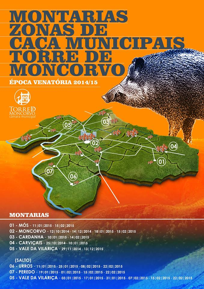 montarias_torre_moncorvo_20145_2015