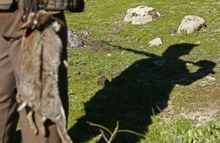 Açores – Governo autoriza caça no sábado para compensar proibição no dia das eleições