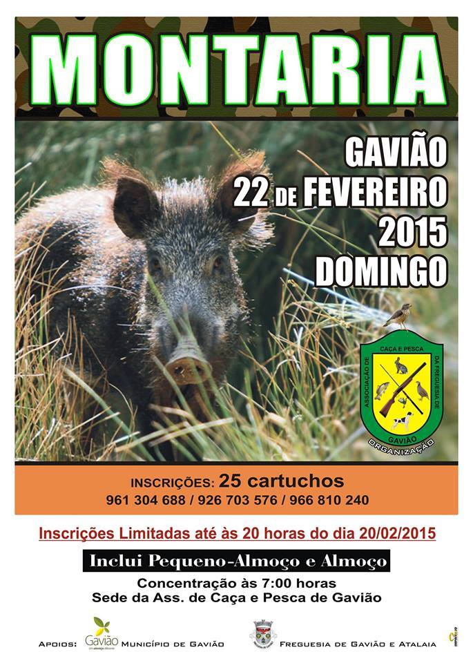 montaria_gaviao_22fevereiro2014