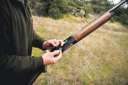 Sem coelhos na mira, as armas dos caçadores viram-se para tudo o que mexe