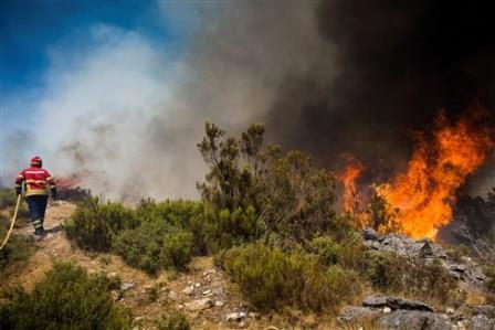 Câmara de Loulé apoia caçadores para vigiarem e travarem fogos florestais
