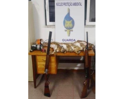 Guarda – Detenção por caça ilegal