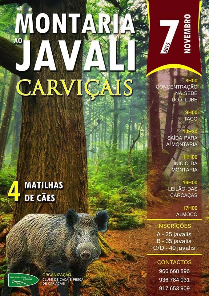 montaria_carvicais_7nov2015