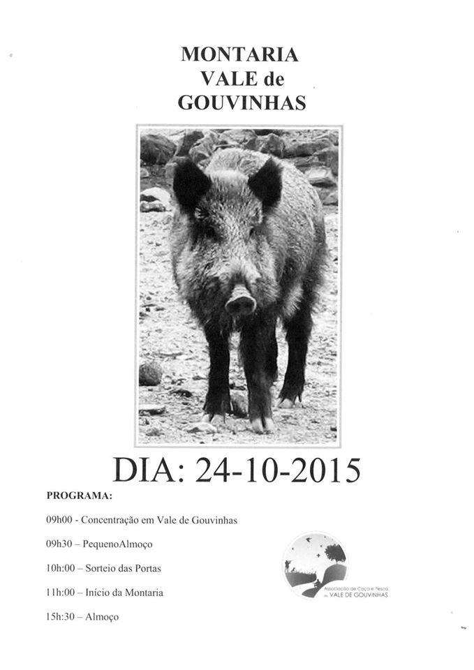 montaria_vale_gouvinhas_24out2015