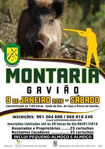 MONTARIA_GAVIAO_9JAN16