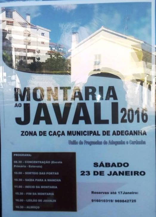 montaria_adeganha_23jan16