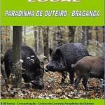 MONTARIA_PARADINHA_OUTEIRO_28FEV16