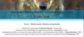 WAVES_LOBO_1JUL16