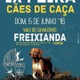 feira_caes_freixianda_5jun16
